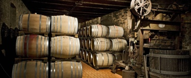 Wine cellars in Tuscany open at Christmas time